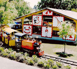 Nut Tree Train